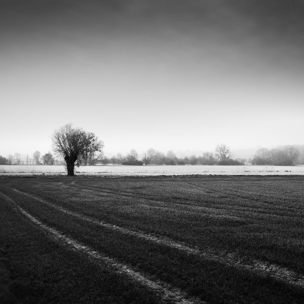 Paysage-poetique-carre-NB-MG-4256.jpg
